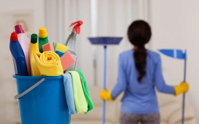 Limpieza De Casas Servicio Profesional